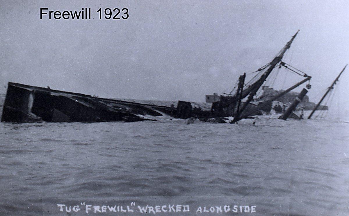 Freewill1200