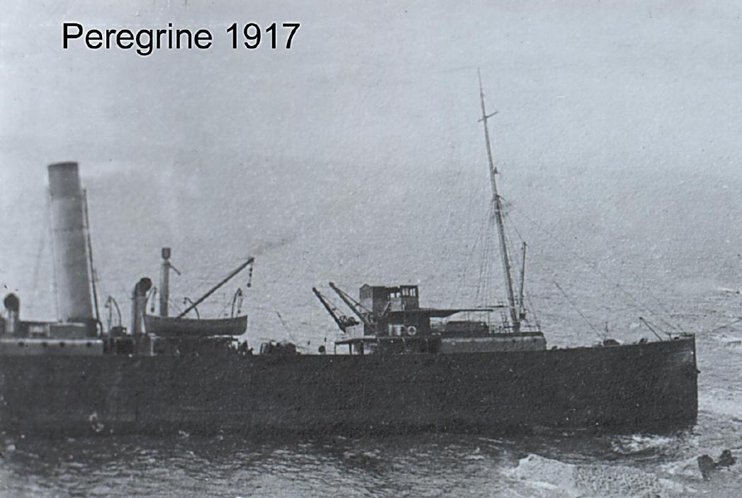 Peregrine1200