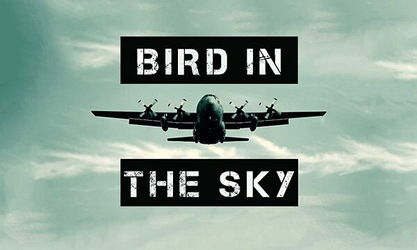 Bird in the Sky 2